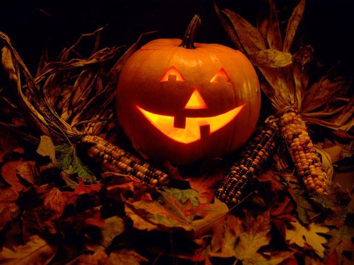 http://rpxwiki.com/wp-content/uploads/2013/10/65798220_1288100641_Halloween_5.jpg