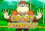 Онлайн слот Crazy Monkey